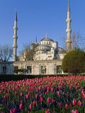 Blue Mosque  also known as the Sultanahmet Mosque  Gives its Name to the Surrounding Area