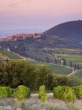 Castelnuovo Del'Abate  Tuscany  Italy