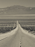 California  Mojave Desert  Amboy Road  USA