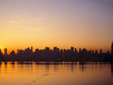 Manhattan Skyline  New York City  USA