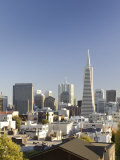 California  San Francisco  Downtown Skyline and Transamerican Pyramid  USA