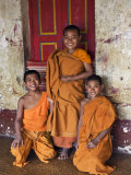 Group of Happy Young Novice Monks at Monastery in Ban-Lo  a Shan Village Outside Kengtung  Myanmar