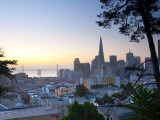 California  San Francisco  Downtown and Transamerica Building  USA
