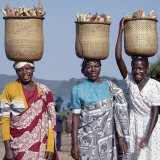 Group of Cheerful Women Carry Sweet Potatoes to Market in Traditional Split-Bamboo Baskets