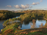 Autumn Colours at Tarn Hows Nearr Hawkshead  Lake District  Cumbria  England