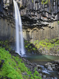 Svartifoss Waterfall  Skaftafell Park  Iceland
