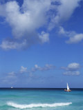 Carlisle Bay  Barbados  Caribbean