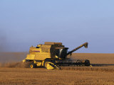 Lincolnshire  Walcot  Combine Harvester Harvesting Wheat  England
