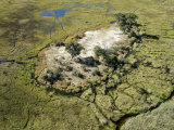 Aerial Photograph of the Okavango Delta