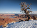 Utah  Moab  Dead Horse Point State Park  View of the Meander Canyon  Winter  USA
