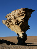 Arbol De Piedra or Stone Tree Is a Massive Wind-Eroded Boulder  8 Metres High That Rises Above the 