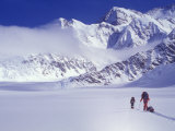 Climbers Ski Up the Kahiltna Glacier Towards Mount Mckinley