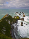 Nugget Point  Catlins  South Island  New Zealand