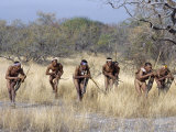 Bushman Hunter-Gatherers Makes Stealthy Approach Towards an Antelope  Bows and Arrows at Ready