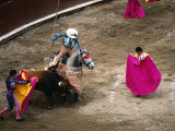 Crowds at a Stadium for a Bullfight  Quito  Ecuador