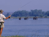 Lower Zambezi National Park  Fly-Fishing for Tiger Fish on the Zambezi River Against a Backdrop of