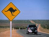 Kangaroo Road Sign  Western Australia  Australia