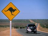 Kangaroo Road Sign  Western Australia  Australia