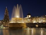 Christmas Tree and Fountains Lit Up in Trafalgar Square for Christmas