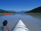 Alaska  Wrangell-St Elias National Park and Preserve  Kayaking in Moose Valley  USA