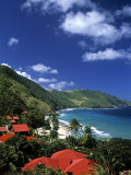 Cane Bay  St Croix  Us Virgin Islands  Caribbean