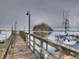 California  Morro Bay  Morro Rock  USA