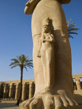 Colossal Statue of Ramses Ii Stands in the Great Forecourt of Karnak Temple  Luxor  Egypt