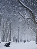 Hyde Park Snow Scene  London  England  UK