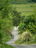 Northumberland  Harbottle  Horseriding Along a Country Lane  England