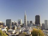 California  San Francisco  Downtown Skyline and Transamerican Pyramid  USA