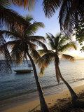 Vieques Island  Esperanza Bay  Puerto Rico