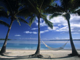 Palms and Hammock  Akitua Motu  Aitutaki  Cook Islands