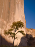 Arizona  Canyon De Chelly National Monument  USA