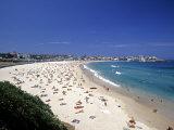 Bondi Beach  Sydney  Nsw  Australia