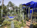 Sub-Tropical Jardin Majorelle in the Ville Nouvelle of Marrakech