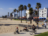 California  Los Angeles  Venice Beach  People Cycling on the Cycle Path  USA