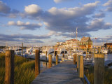 Cape May Harbor  Cape May County  New Jersey  United States of America  North America