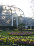 Palm House  Royal Botanic Gardens  Kew  Greater London