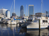 Boat Marina  Jacksonville  Florida  United States of America  North America