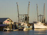 Lazaretto Creek Fishing Port  Tybee Island  Savannah  Georgia