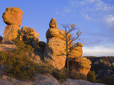 Rock Formations in Chiricahua National Monument  Willcox  Cochise County  Arizona