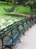 Benches  Central Park  Manhattan