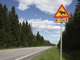Road Sign for Elk Crossing  Highway Number 14  Punkaharju Ridge  Savonlinna