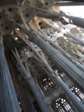 Interior with Columns and Windows  La Sagrada Familia Church  Barcelona  Catalonia  Spain  Europe