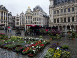 Grand Place  UNESCO World Heritage Site  Brussels  Belgium  Europe