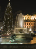Christmas Tree and Fountains in Trafalgar Square at Night  London