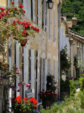 Street of Houses  St Jean De Cole  Dordogne  France  Europe