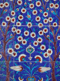 Iznik Tiles in Topkapi Palace  Istanbul  Turkey  Europe