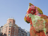 Puppy  the Dog Flower Sculpture by Jeff Koons  Bilbao  Basque Country  Spain  Europe