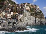 Manarola  Cinque Terre  UNESCO World Heritage Site  Liguria  Italy  Europe